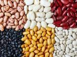 Fazuľa, ľanové semiačko, šošovica, cícer, hrášok a iné poľnohospodárske výrobky. - photo 1