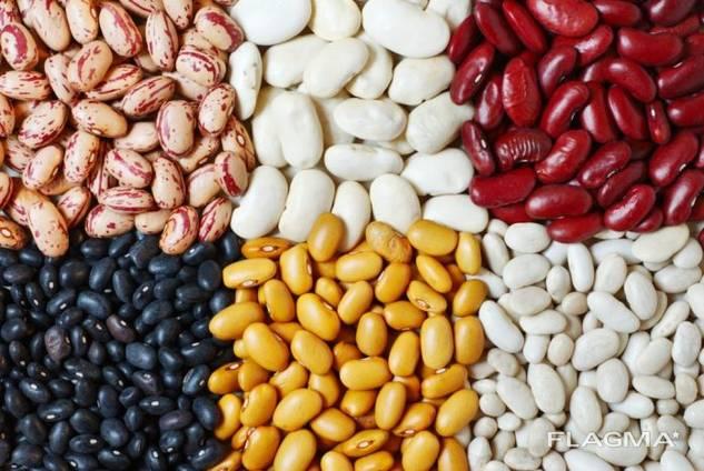 Fazuľa, ľanové semiačko, šošovica, cícer, hrášok a iné poľnohospodárske výrobky.
