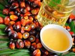 Пальмовое масло - photo 2