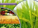 Výrobca a dodávateľ pesticídov na celom svete - photo 2